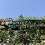四季の香ローズガーデン「バラのことを知ってみよう展」が2018年5月3日~2018年5月27日まで開催中